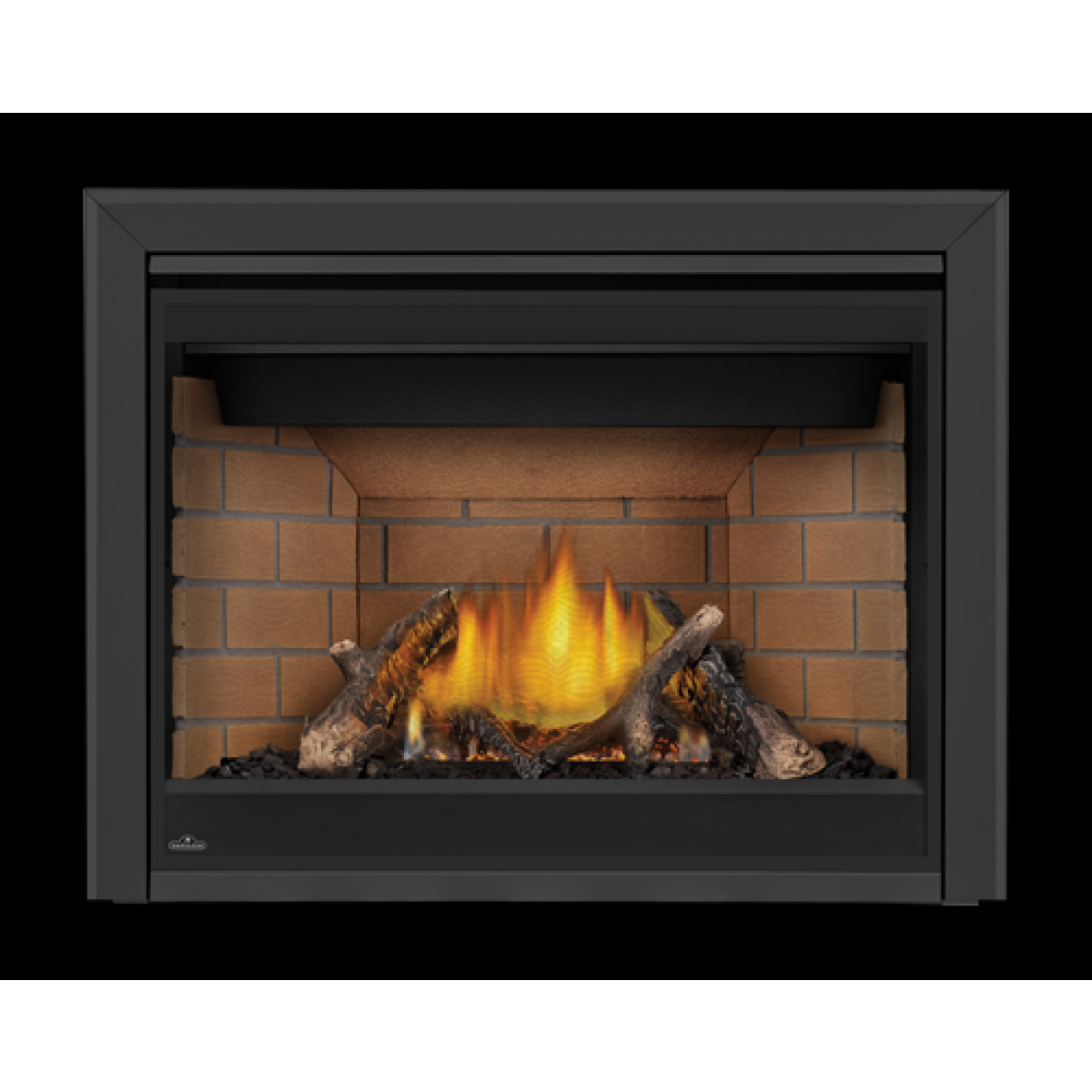 Napoleon Gx42ptre Direct Vent Propane Gas Fireplace