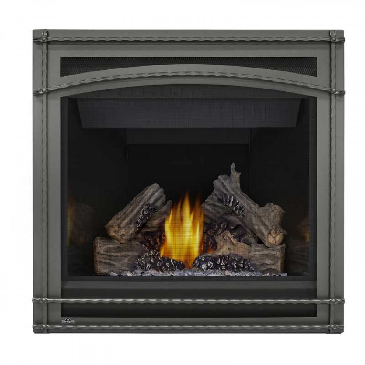 Napoleon ascent 36 direct vent gas fireplace for Fireplace options