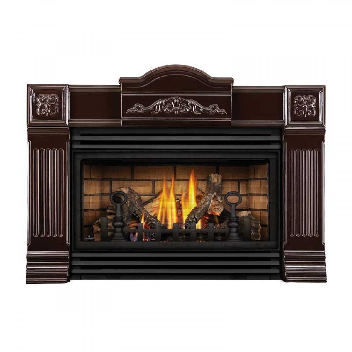 Napoleon Gdi30nsb Basic Fireplace Insert W Glass Door At