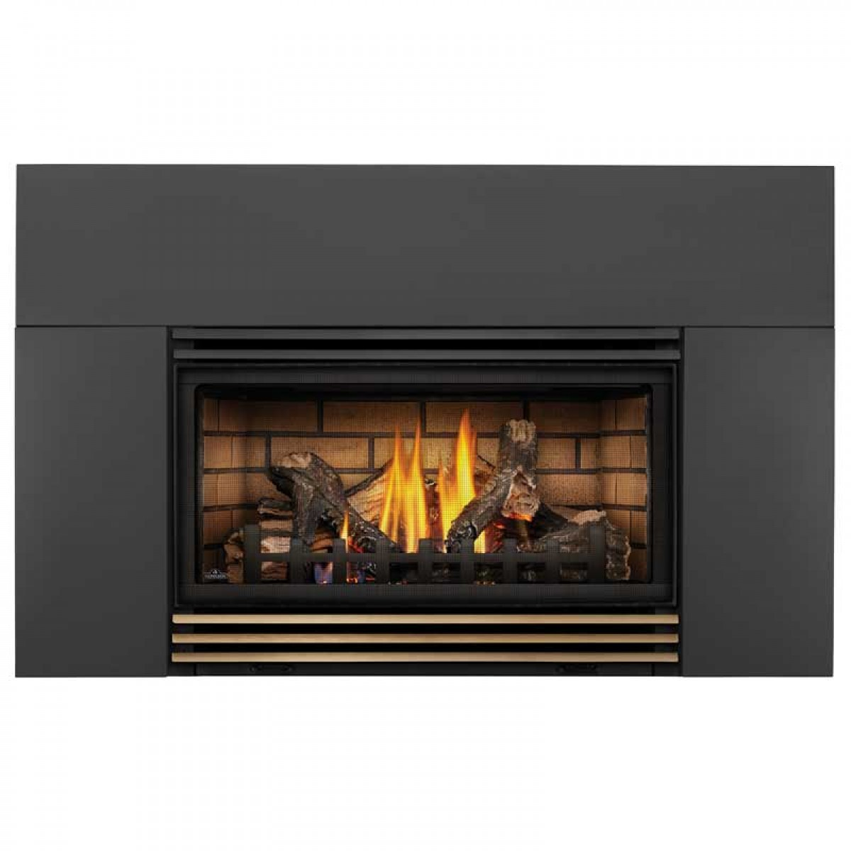 Napoleon Roxbury 30 Gas Fireplace insert