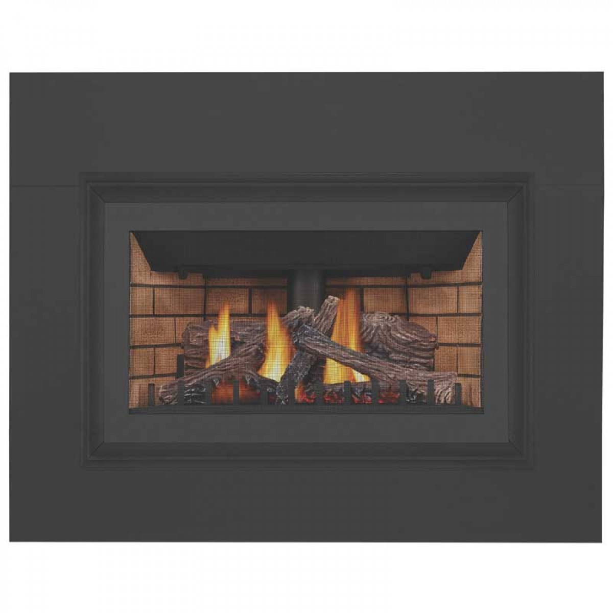 napoleon gdizc n basic gas fireplace insert w