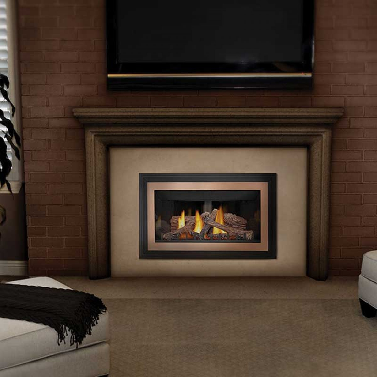 Napoleon GDIZC N Basic Natural gas fireplace insert w