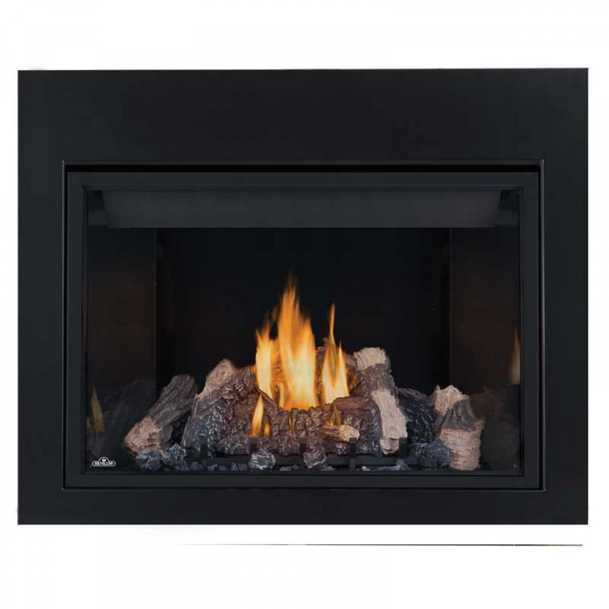 Napoleon HD40NT-1 Top vent Natural gas Fireplace w/black ...