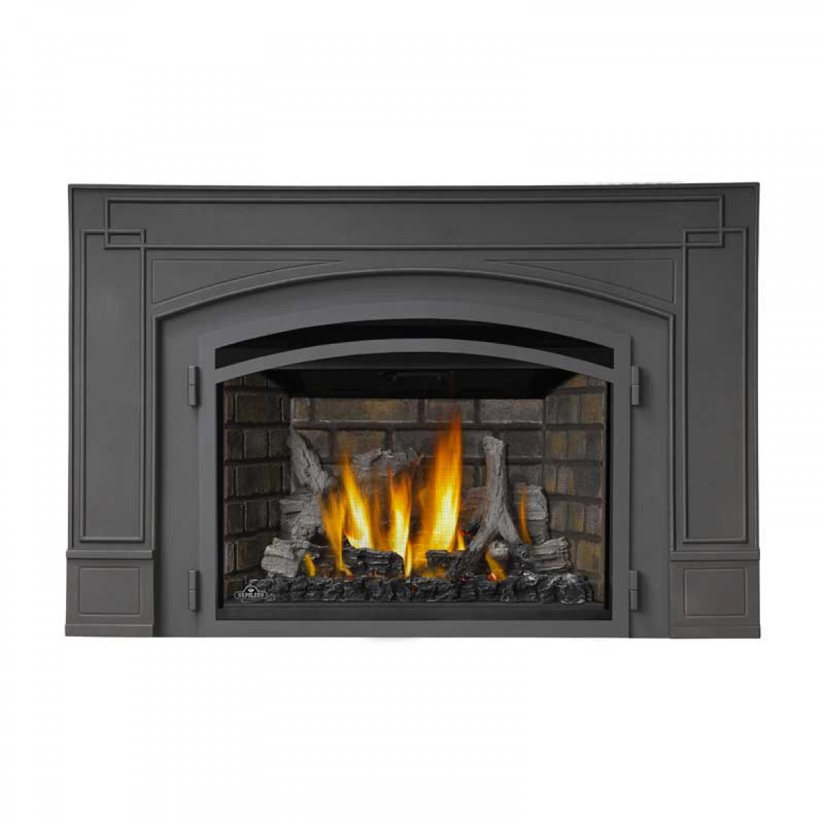 Napoleon ir3 infrared series gas fireplace insert for Fireplace insert options