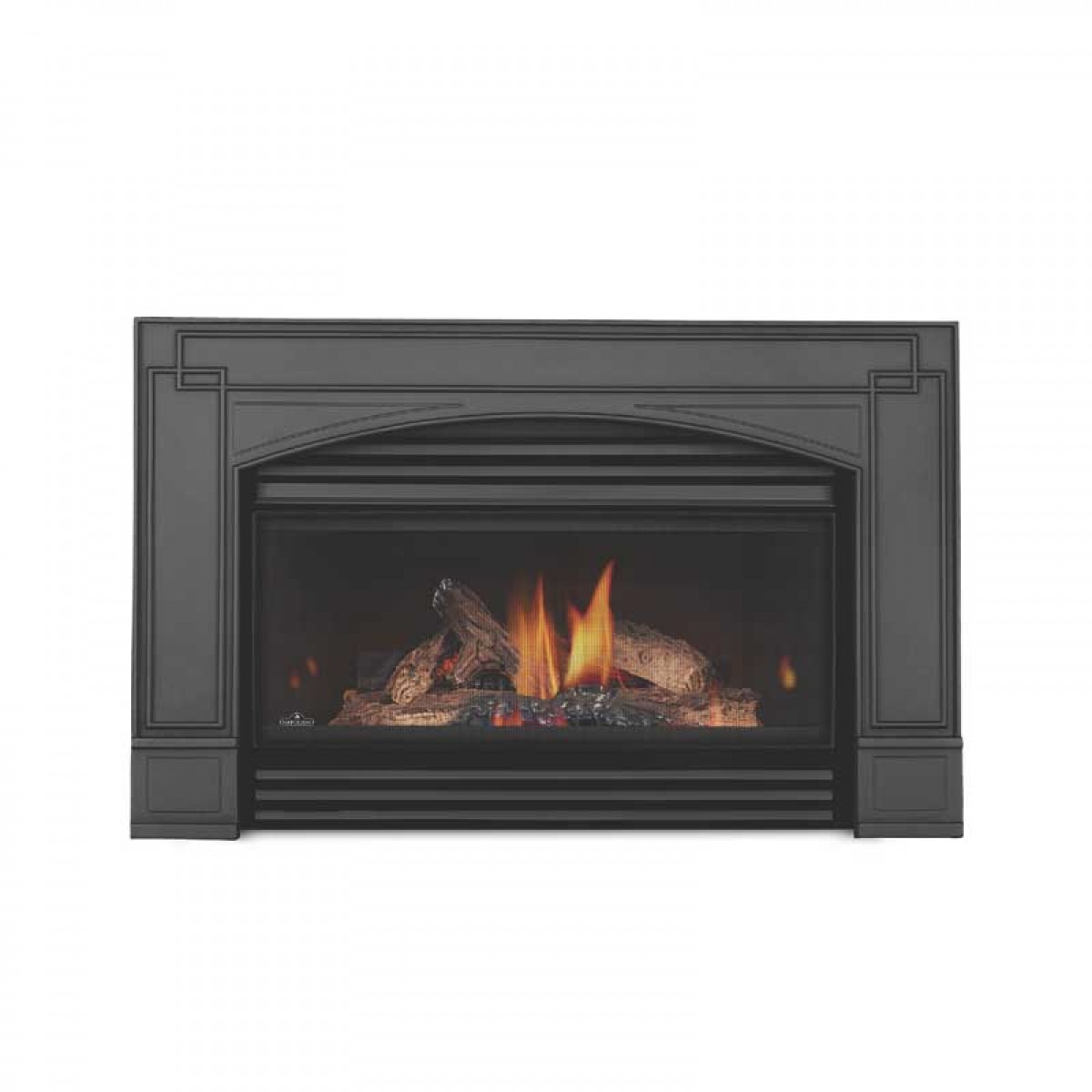 napoleon gi3600 4n basic natural gas fireplace insert w glass at