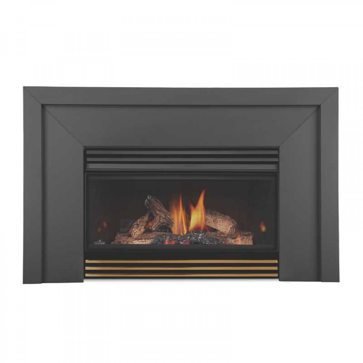 Napoleon GI3600-4N Basic Natural gas fireplace insert w ...