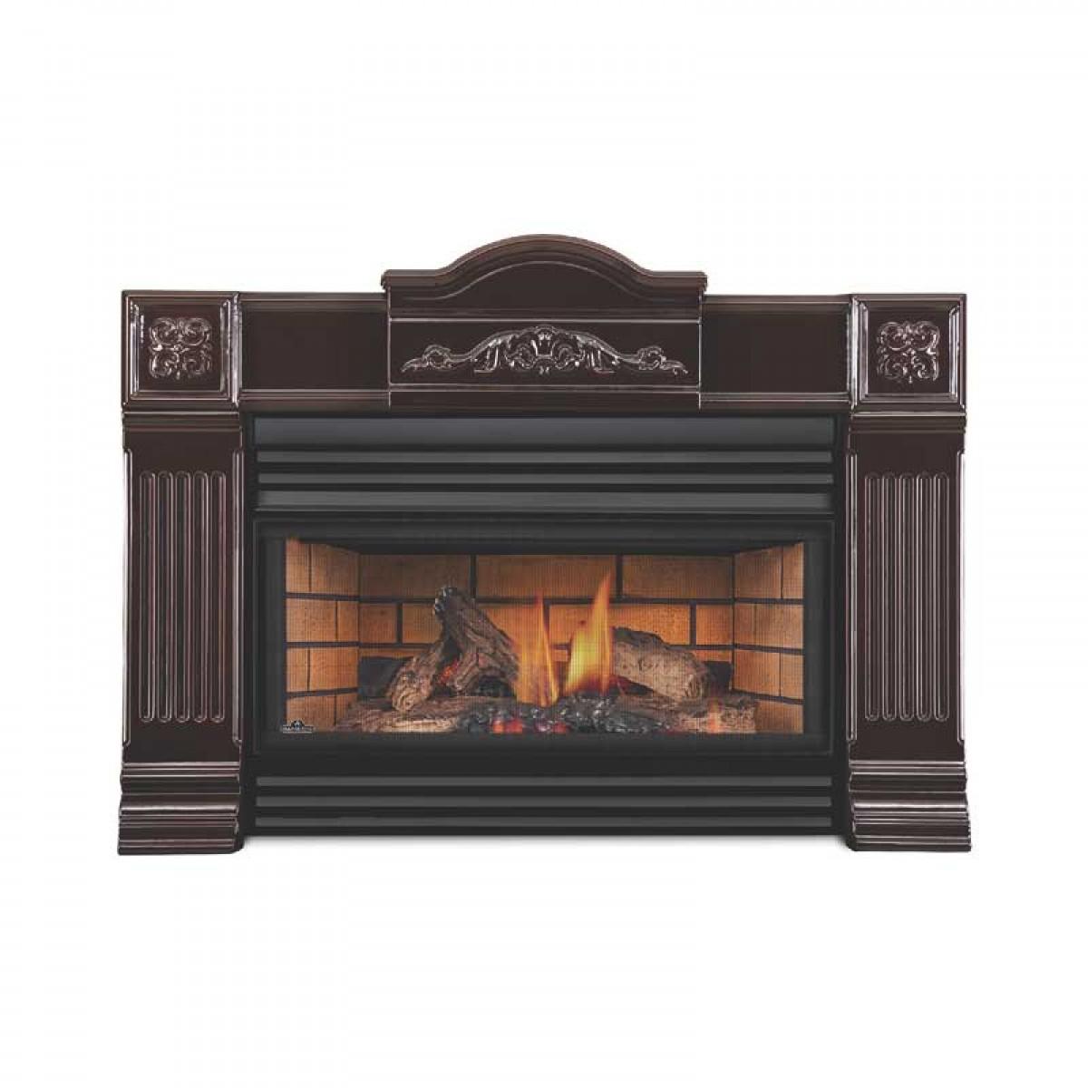 Napoleon Roxbury 3600 Gas Fireplace Insert