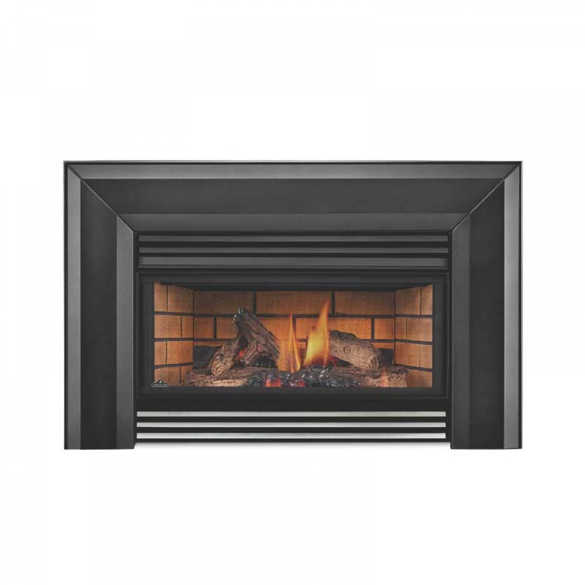Napoleon Gi3600 4n Basic Natural Gas Fireplace Insert W Glass At Ibuyfireplaces