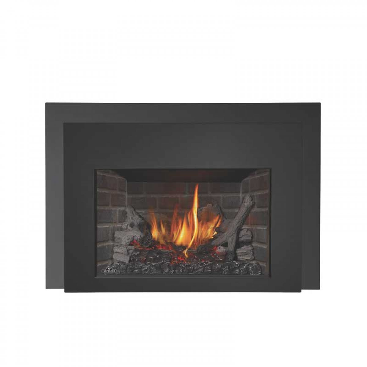 Napoleon XIR3NSBDeluxe Natural Gas fireplace insert at ...