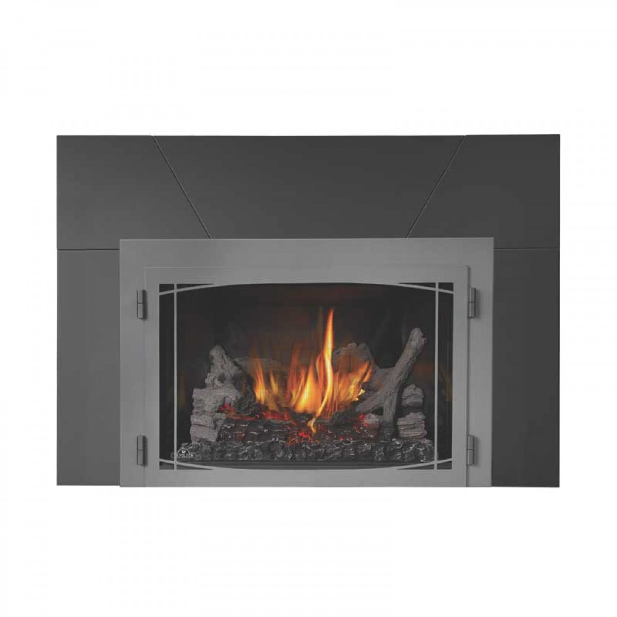 Napoleon Direct Vent Fireplaces Gas Fireplace Insert