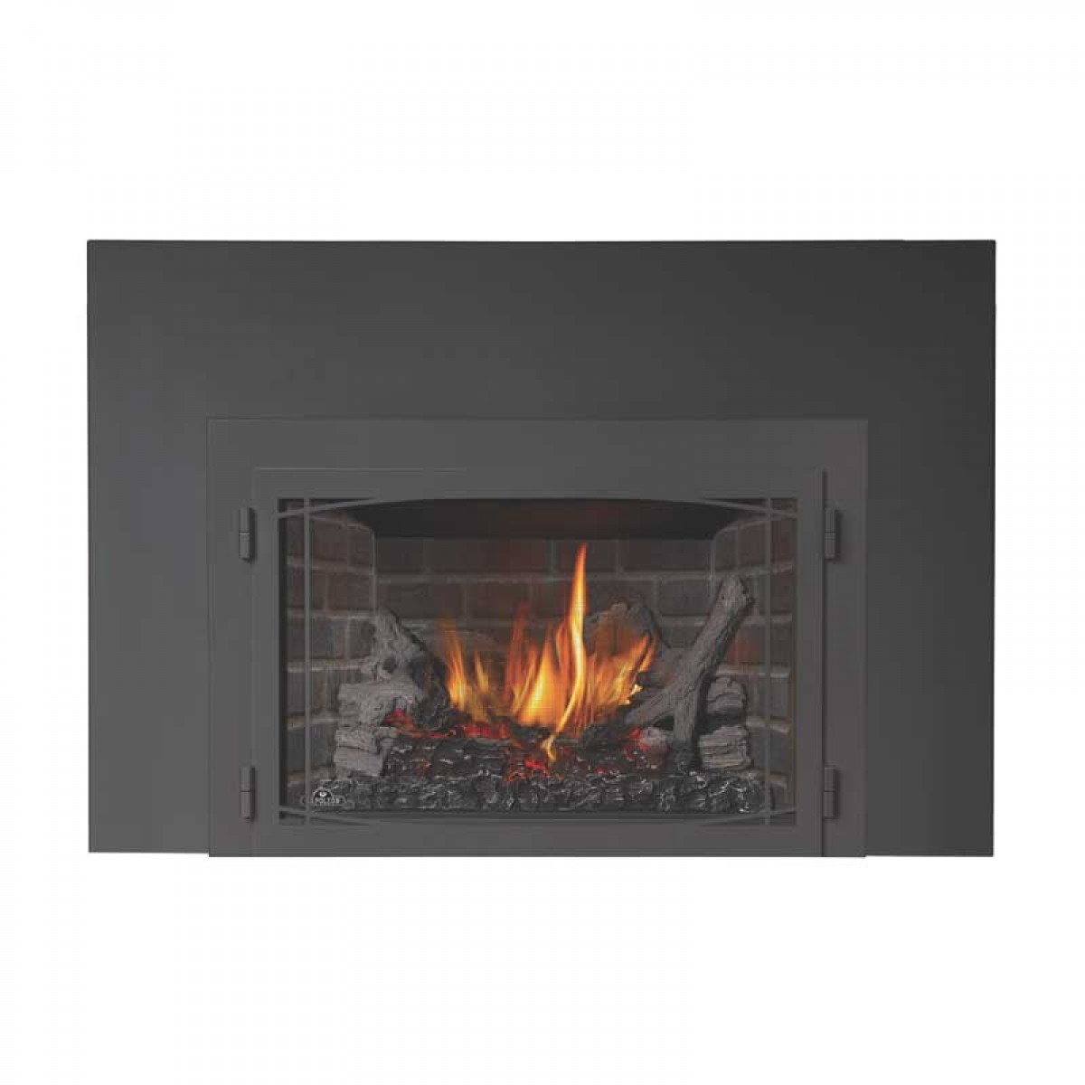 Napoleon X3 Infrared Series Gas Fireplace Insert