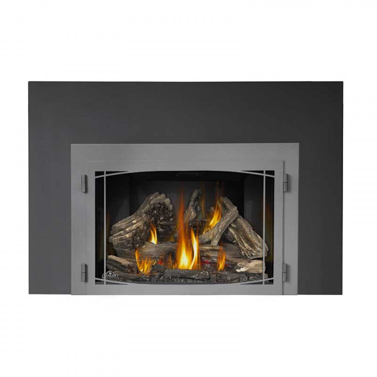 Napoleon Xir4n 1 Large Deluxe Natural Gas Fireplace Insert At Ibuyfireplaces