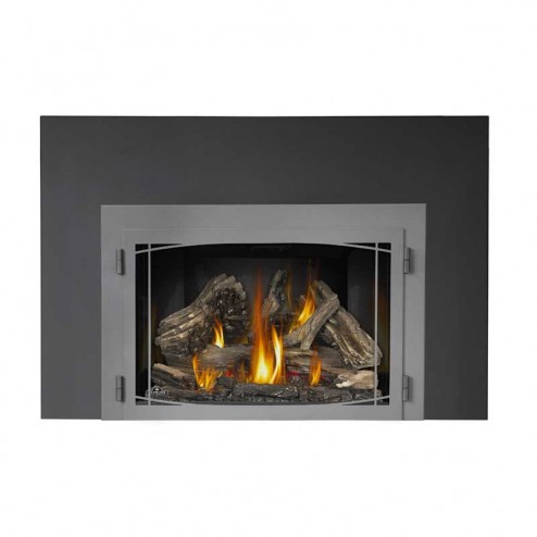 Napoleon X4 Infrared Series Gas Fireplace Insert