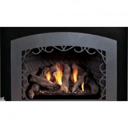 Empire DXT30IN91P Luxury Innsbrook Traditional DV Medium Propane-LP Fireplace Insert/MF Remote