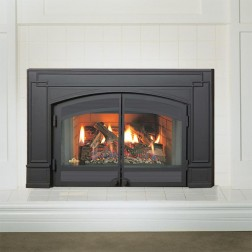 Napoleon GI3600-4NSB Roxbury Nat-gas fireplace insert w/glass