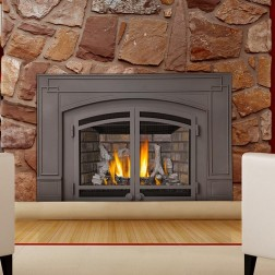 Napoleon IR3N-1SB Basic Natural Gas Fireplace Insert