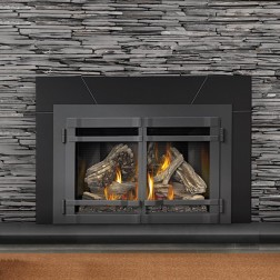 Napoleon XIR4N-1SB Large Deluxe Natural Gas fireplace insert