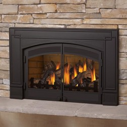Napoleon GDI-30NSB Roxbury Series Natural gas fireplace insert