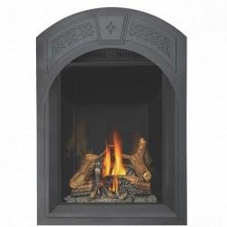 Napoleon GD82NT-PAESB Park Avenue top vent Natural gas fireplace