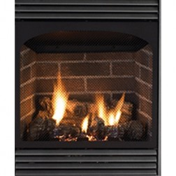 Empire VFP24FP70LN Vail-24 VF NG 20K Btu Fireplace w/IP Remote Ready